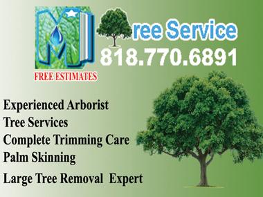 TreeServiceRemoval.jpg